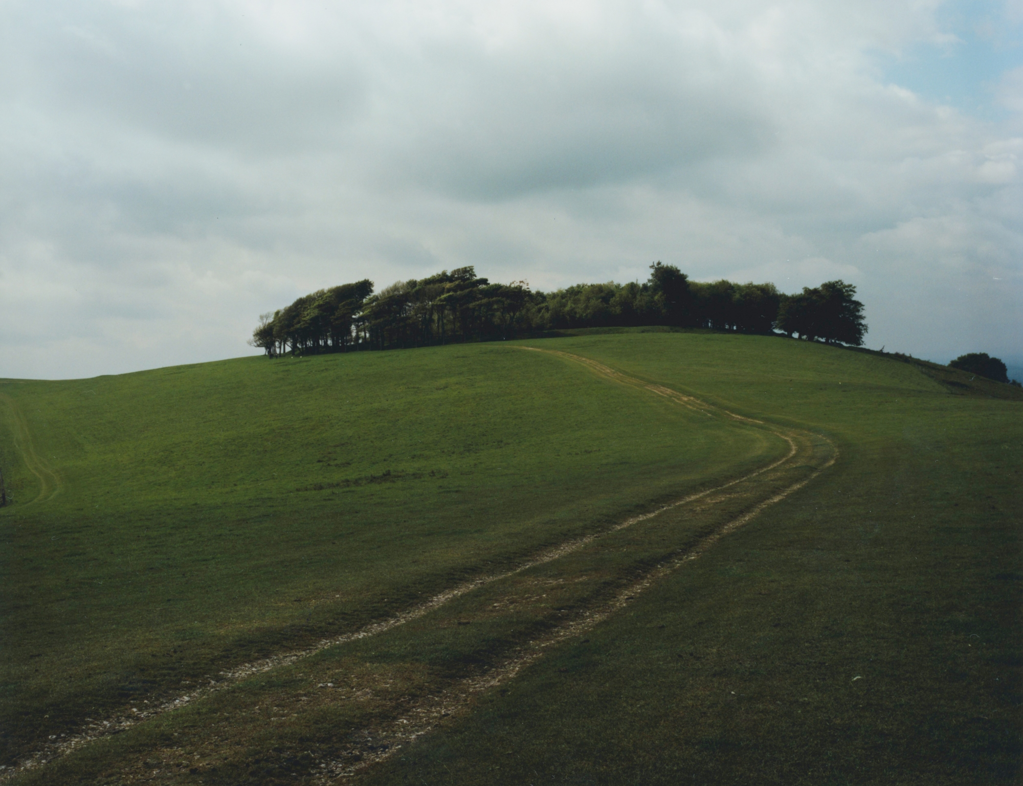 South Downs Way Walk